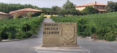 Visitas a Bodegas Amezola de Mora