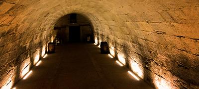 Visita al Calado San Gregorio