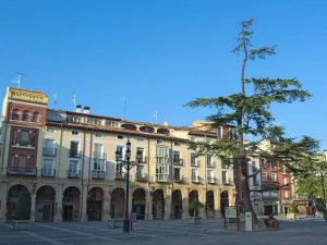 Visitas a la Plaza del Mercado en Logroño